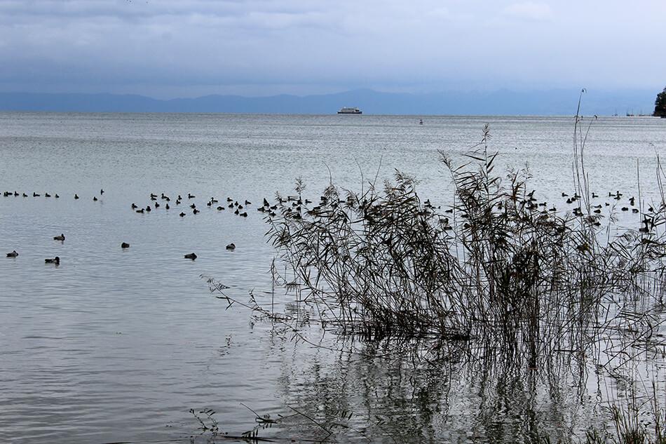 Ausflug zum Bodensee
